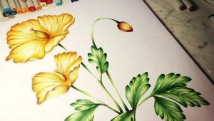 Drawing Flowers with Copic Markers 186 Best Stately Flowers Gina K Images On Pinterest