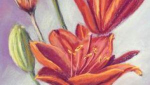 Drawing Flowers with soft Pastels 68 Best Pastels Lessons Images Pastel Pencils Art Oil Pastels