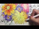 Drawing Flowers with Watercolor Pencils Flower Coloring Tutorial 2 Floribunda Coloring Book Colored