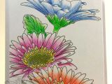 Drawing Flowers with Watercolor Pencils Gayatri Love the Watercolor Pencil Technique Used Intentionally
