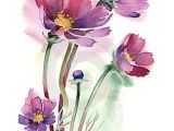 Drawing Flowers with Watercolor Pencils Watercolor Cosmos Flowers Beautiful 3 Watercolor Paintings