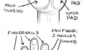 Drawing Hands Basics 115 Best How to Draw Hands Images In 2019 How to Draw Hands