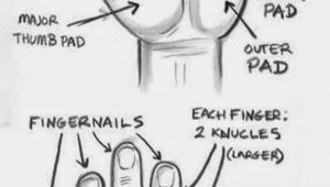 Drawing Hands In 3d the Structure Of Hand Study Realistic Hyper Art Pencil Art 3d