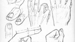 Drawing Hands Reference Pictures Drawing Hands Art References Drawings How to Draw Hands Hand