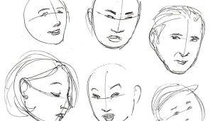 Drawing Head Shapes Human Anatomy Fundamentals Basics Of the Face