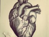Drawing Heart with Pencil Pin by Amanda Z On Heart Tattoos Heart Tattoo Designs Brain Tattoo