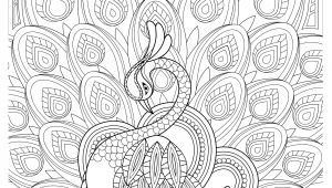 Drawing Ideas Peacock Peacock Feather Coloring Pages Colouring Adult Detailed Advanced