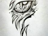 Drawing Lizard Eye 17 Best Dragon Eye Drawing Images Dragon Eye Drawing Drawings