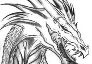 Drawing Made Easy Dragons Fantasy 35 Best Drawing Fantasy Creatures Images Sketches Draw Animals