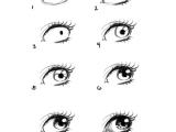 Drawing Manga Eyes Step by Step How to Draw Eye Portrait Step by Step Eyeballs Drawings Art