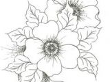 Drawing Multiple Flowers 1147 Best Drawing Flowers Images In 2019 Doodles Little Tattoos