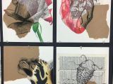 Drawing N Painting Classes Multi Medium Drawing 2 Project Ink Charcoal and Color Pencil On