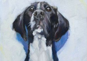 Drawing Of A Blue Dog Black and White Great Dane Looking Up original Daily by Hartart13