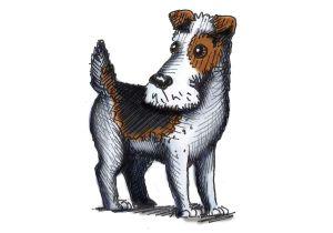 Drawing Of A Blue Dog Hannah Tuohy Illustrator Dogbarkingvideo Dog Barking Video