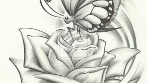Drawing Of A butterfly On A Rose butterfly Pencil Drawing if It Were A Dragonfly It Would Be Perfect