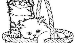 Drawing Of A Cat In A Basket Claire Arte Mania E Cia Riscos Para Bolsas Camisetas