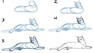 Drawing Of A Cat Laying Down How to Draw Cat Bodies In Poses Savanna Williams Drawing
