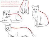 Drawing Of A Cat Lying Down How to Draw A Cat Dr Odd