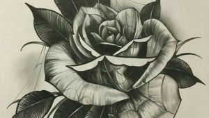 Drawing Of A Closed Rose How to Draw A Closed Rose Step by Step Beautiful Closed Rose Drawing