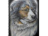 Drawing Of A Collie Dog Drawing Of Collie Dog Animal Art Notebook Collie Dog