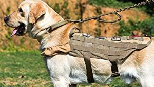 Drawing Of A Dog On A Leash Amazon Com Onetigris Tactical K9 Mesh Harness Power Train with