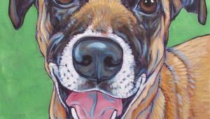 Drawing Of A Dog Painting Belgian Malnois Mixed Breed Dog Custom Pet Portrait Painting In