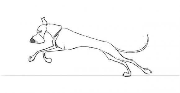 Drawing Of A Dog Running Dog Run Cycle Animal Creature Animation Pinterest Animation