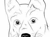 Drawing Of A Dog Step by Step Learn How to Draw German Shepherd Dog Face Farm Animals Step by