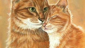 Drawing Of A Ginger Cat Pin by Tammy Parrott On Cat Art In 2019 Cat Art Cats Ginger Cats