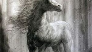 Drawing Of A Girl Horse 461 Best Horse Drawings Images Drawings Of Horses Horse Drawings