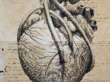 Drawing Of A Heart attack Pin by D A A D D D A A D On A I Frankensteina Pinterest Heart