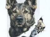Drawing Of A Police Dog 54 Best Colored Pencil Drawings by Lauren Heimbaugh Beware Of Trees