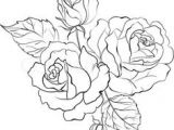Drawing Of A Rose Bouquet 31 Best Flower Bouquet Tattoo Outlines Images Flower Designs