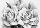 Drawing Of A Rose Bouquet Beautiful Sketches Of Flowers Beautiful Rose Flower Bouquet