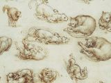 Drawing Of A Sleeping Cat Leonardo Da Vinci Cats Drawings and 6 Quotes