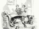 Drawing Of A Sleeping Dog Don T Awaken the Sleeping Cat Let the Sleeping Dogs Lie Jean
