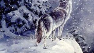Drawing Of A Wolf On A Cliff 404 Best Wolf Drawings Images Drawings Wolves Animal Drawings