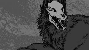 Drawing Of A Wolf Skeleton Wolf Skeleton Random Stuff Pinterest Wolf Drawings and Anime Wolf