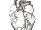 Drawing Of An Actual Heart Home is where the Heart is Hate the Heart ist Art Drawings Ap