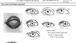 Drawing Of An Eye Labeled 448 Best Draw Human Eyes Images How to Draw Drawing Tutorials