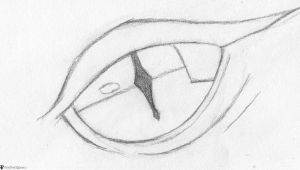 Drawing Of An Eye Simple How to Draw A Dragon Eye Smaug S Eye Finalprodigy Com Things I