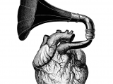 Drawing Of An Heart Music Comes From the Heart the Words that Come From Your Heart Can