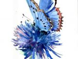 Drawing Of Blue Flowers Stunning Watercolor Flower and butterfly Watercolor Pinterest