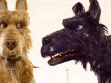 Drawing Of Dancing Dog isle Of Dogs Cast Meet the Famous Voice Actors Hollywood Reporter