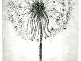 Drawing Of Dandelion Flower Dandelion Root Drawing Google Search Artsy Pinterest