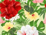 Drawing Of Exotic Flowers Seamless Texture Bouquet Tropical Flowers Floral Arrangement