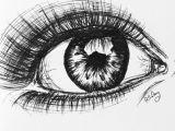 Drawing Of Eyes In Pen Pen Eye Life Draw Art Drawings Art