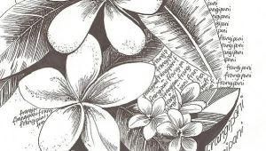 Drawing Of Flower Champa Flowers Drawing Art Tattoos