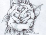 Drawing Of Flowers Garden Black Rose Arm Tattoos for Women Rose and Its Leaves Drawing
