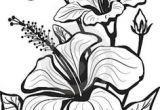 Drawing Of Freesia Flower 1412 Nejlepa A Ch Obrazka Z Nasta Nky Flower Drawings Drawings